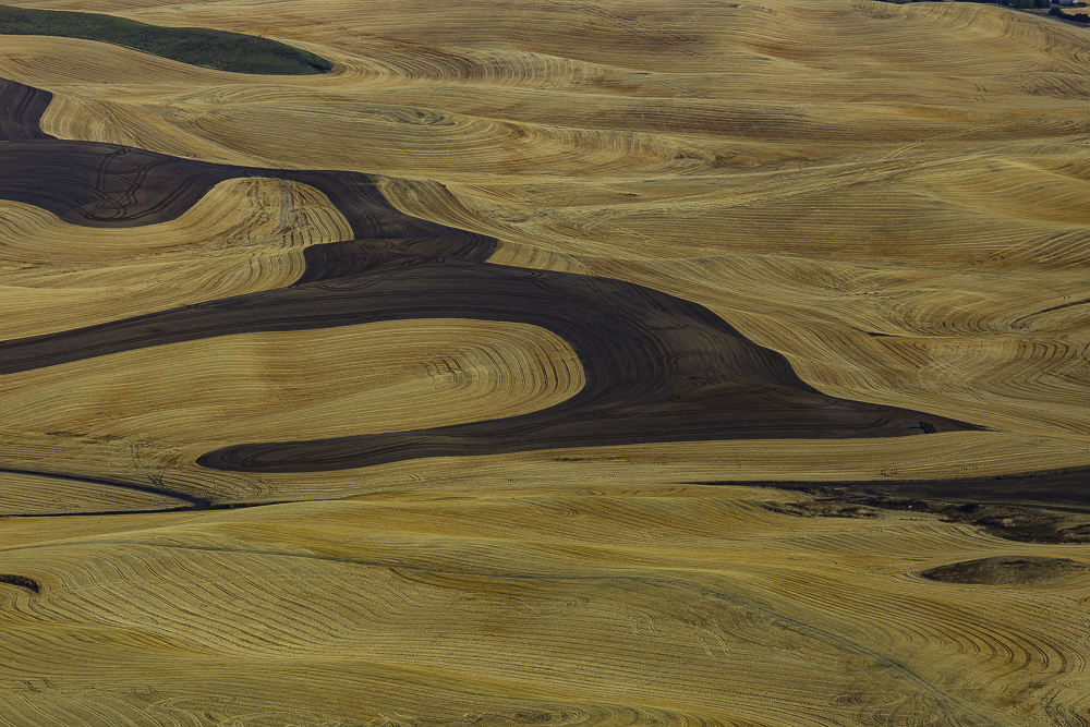 washington Palouse6.jpg
