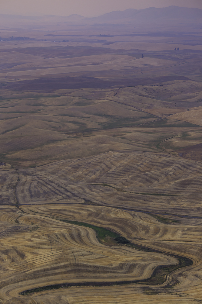washington Palouse9.jpg