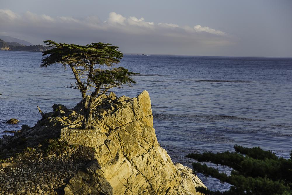Big Sur1.jpg