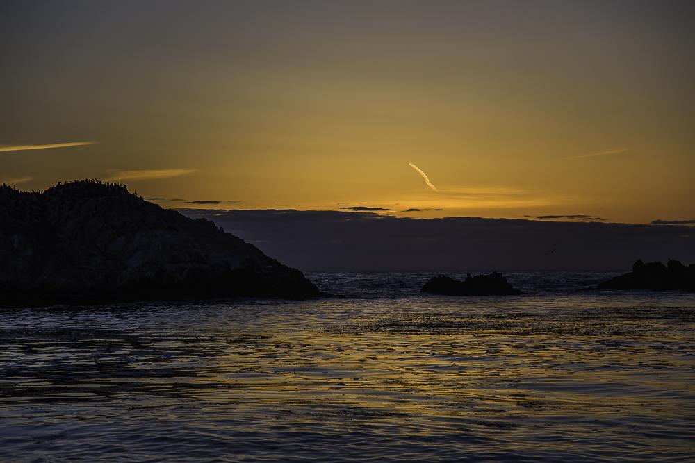 Big Sur6.jpg