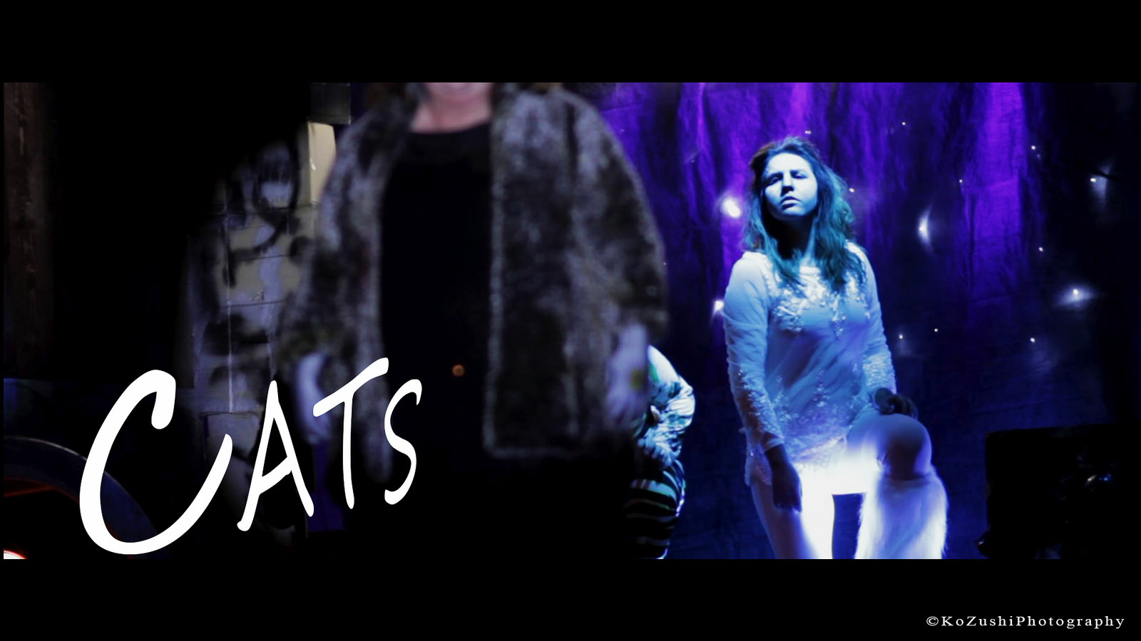 "The Musical ""CATS"" - Troll Players, 2015"
