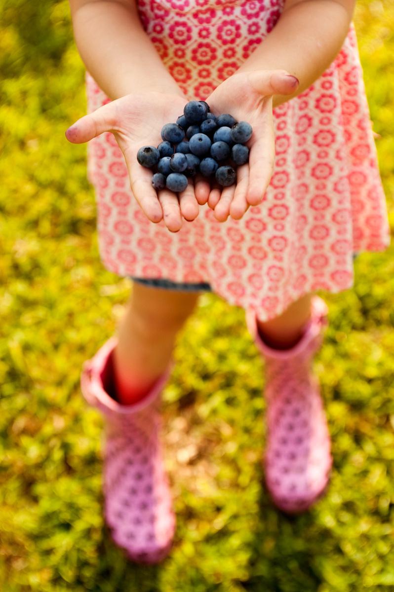 Georgia Food Photographer  Georgia Farm-to-Table Project