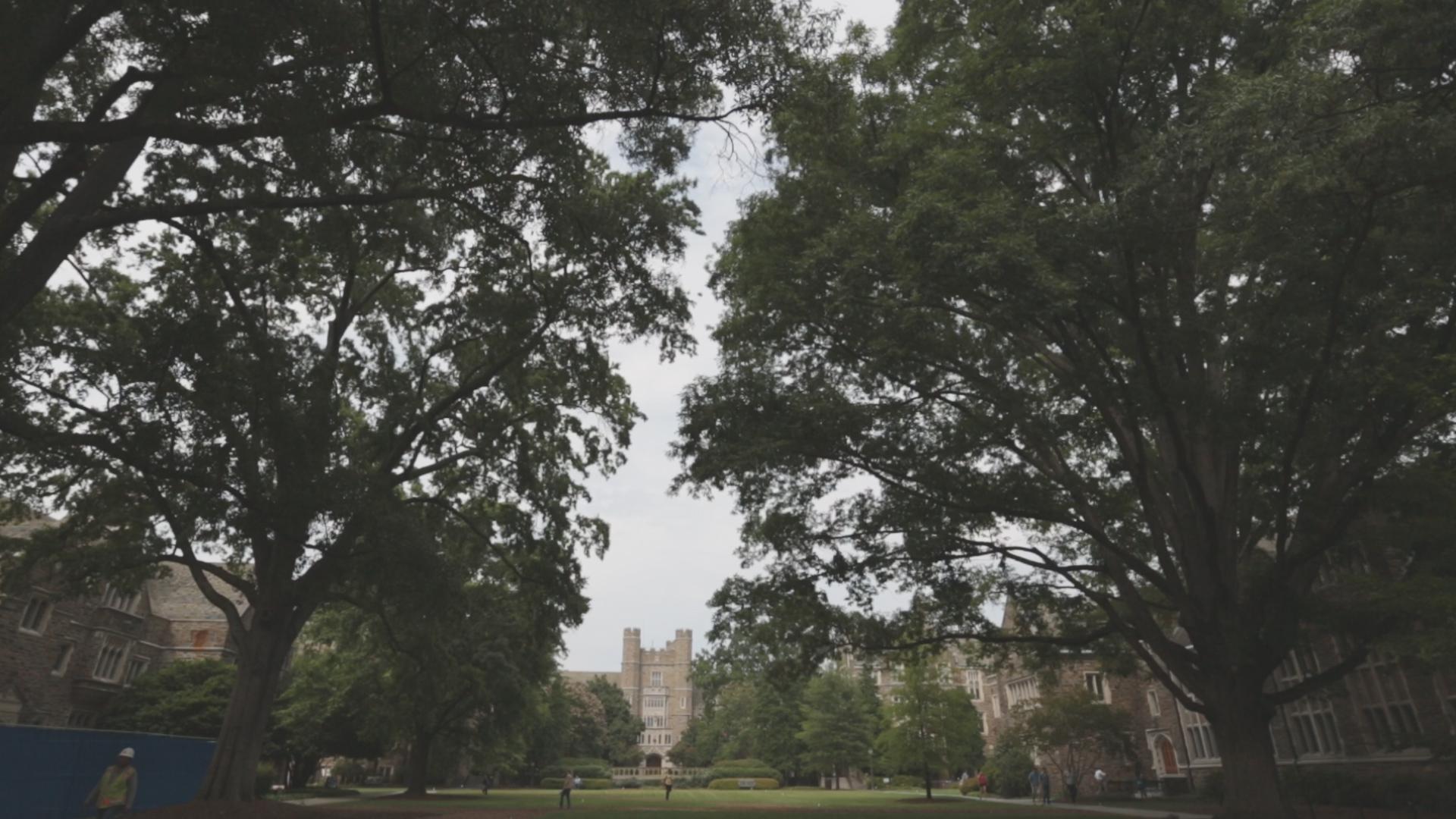 Beautiful old oak trees engulf Duke University's campus quad in Durham, North Carolina