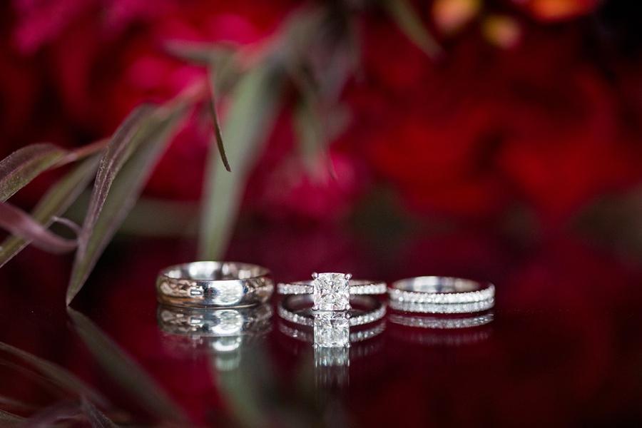 windsor-ontario-wedding-photographers-st-clair-center-for-the-arts-wedding-eryn-shea-photography_0001.jpg