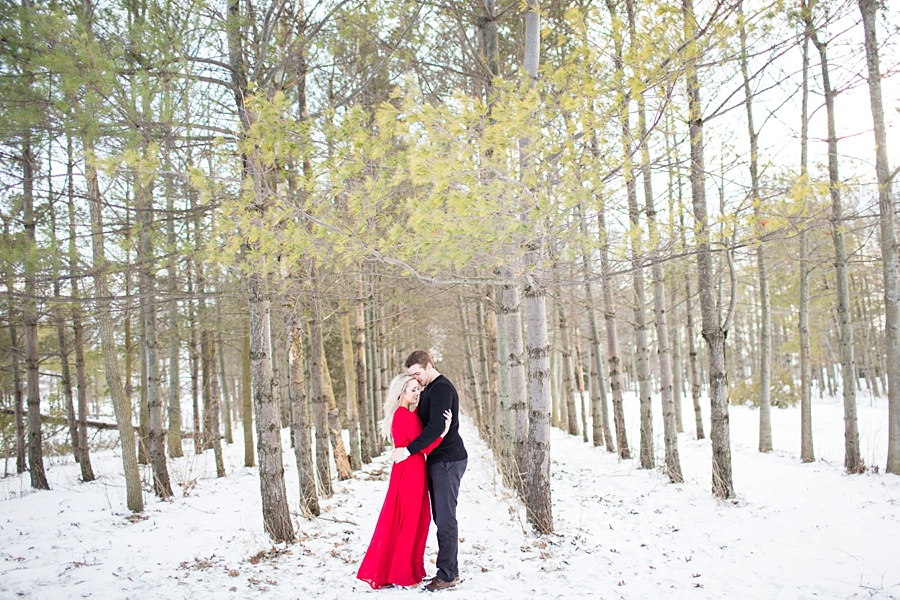 windsor-ontario-wedding-photographer-styled-winter-forest-engagement-session-lulus-dress-eryn-shea-photography_0011.jpg