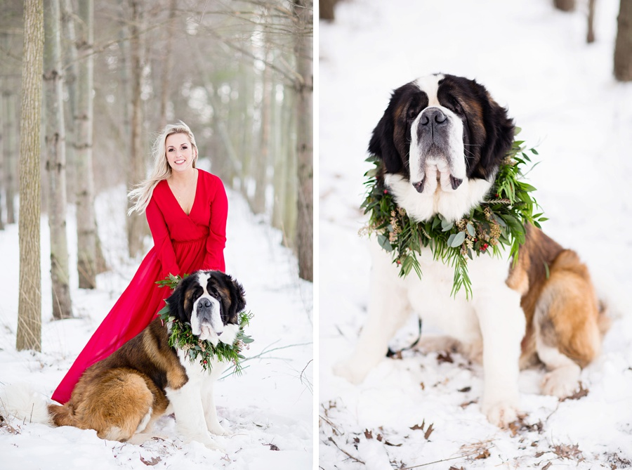 windsor-ontario-wedding-photographer-styled-winter-forest-engagement-session-lulus-dress-eryn-shea-photography_0016.jpg