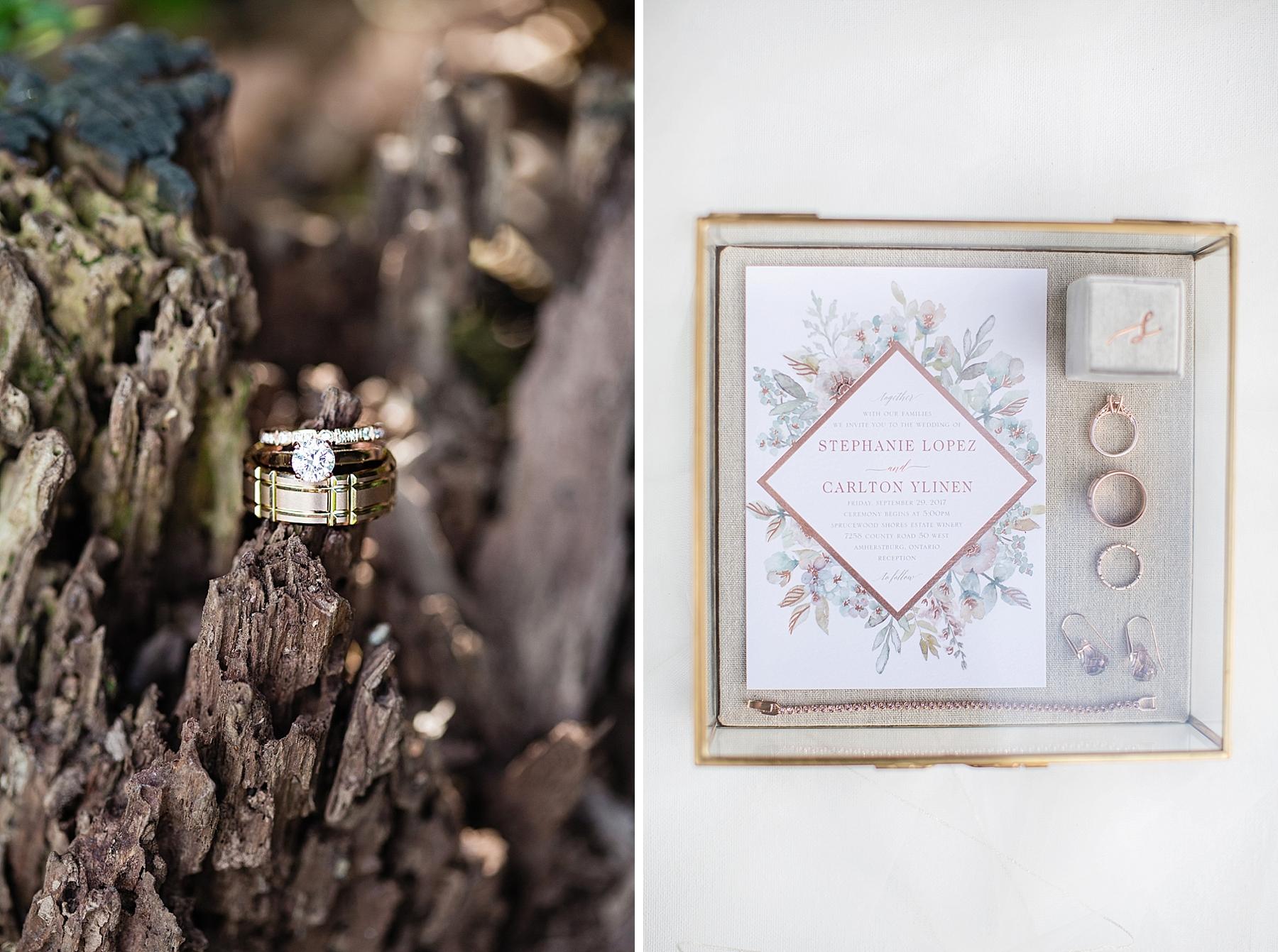 windsor-wedding-photographer-sprucewood-shores-winery-wedding-niagara-on-the-lake-wedding-photographer-eryn-shea-photography_0005.jpg