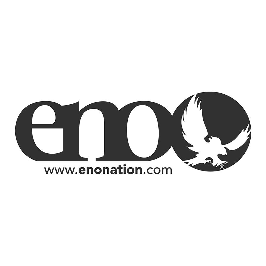 10+published blogs on ENO website.