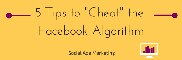 5 Tips to -Cheat- the Facebook Algorithm