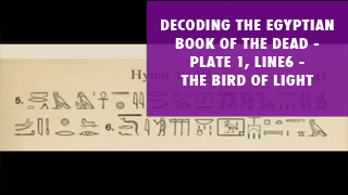 Decoding the Egyptian Book of the Dead Plate 1, Line 6 The Bird of Light.png