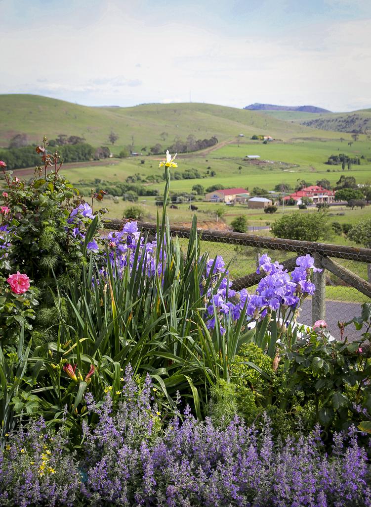 Hamilton Tasmania.jpg
