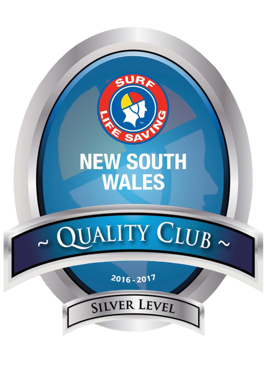 2016 -17 Silver Logotrans.png