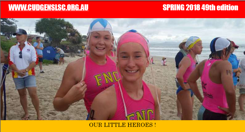 Click on our little heroes to view the full newsletter in PDF