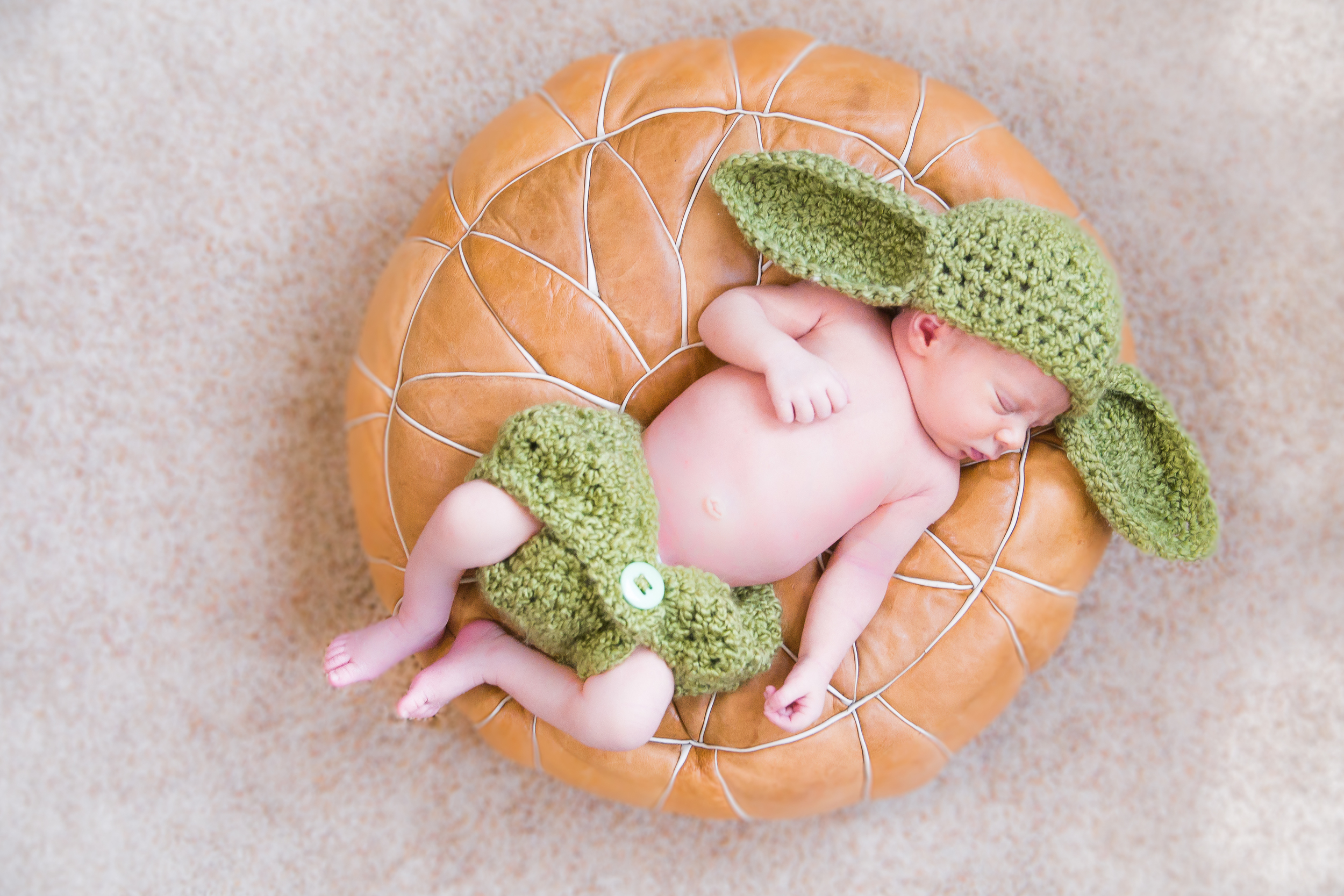South Tampa New born session