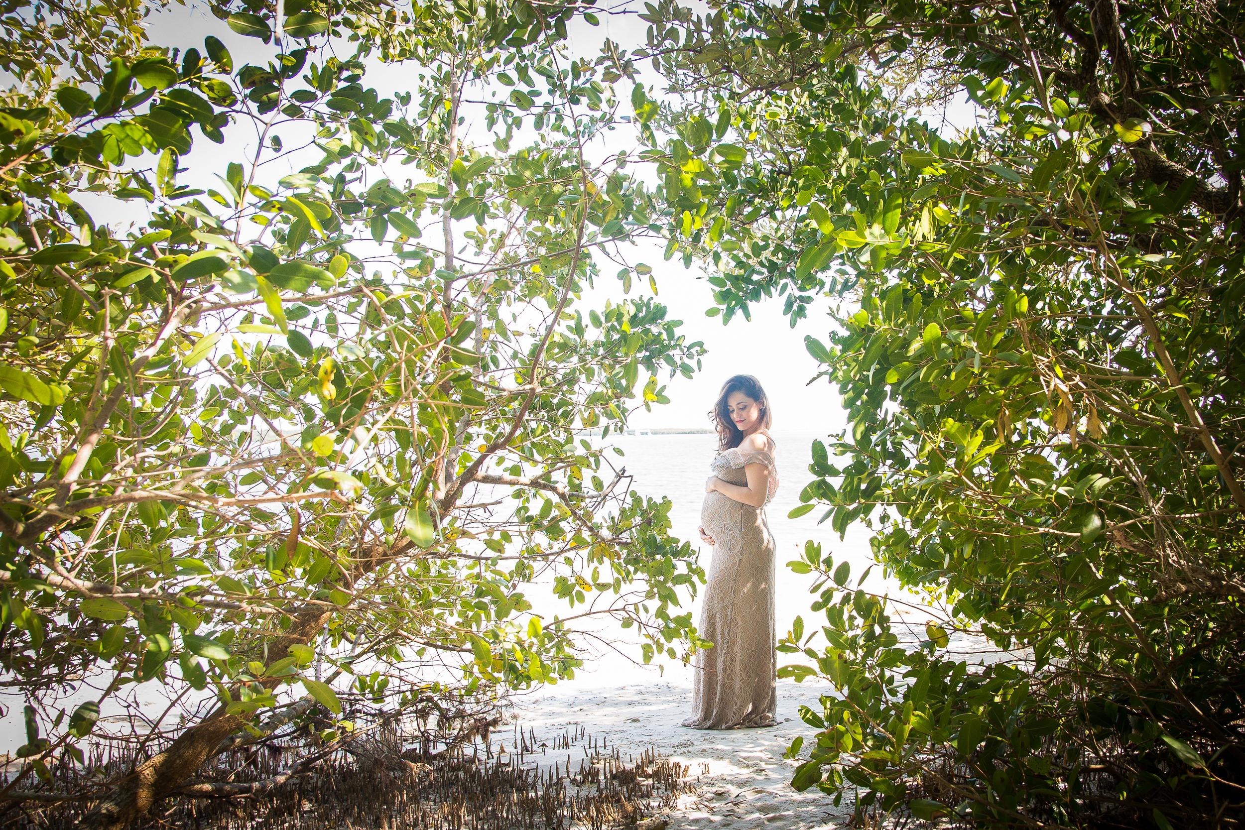 Tampa Maternity