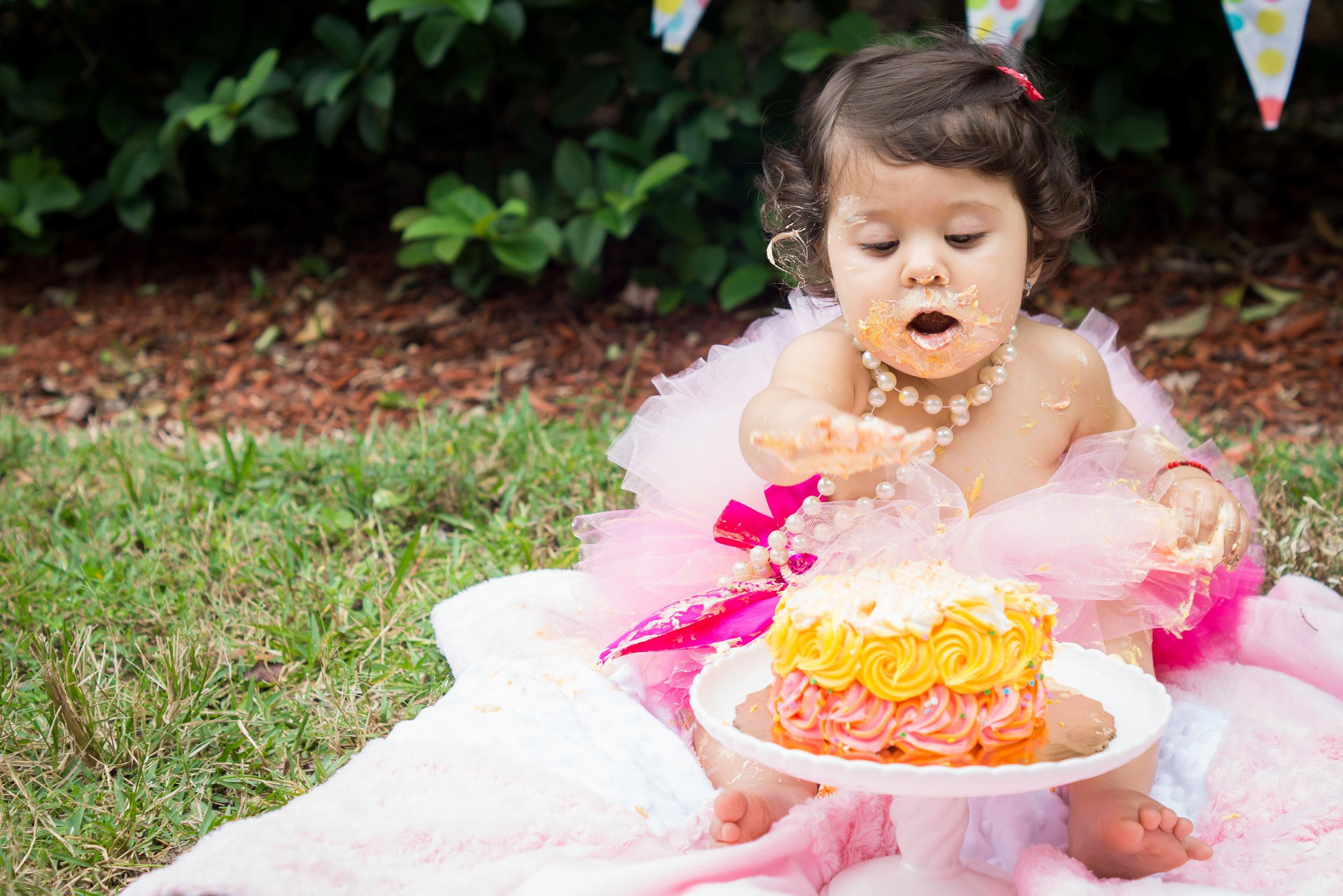Tampa smash cake photographer