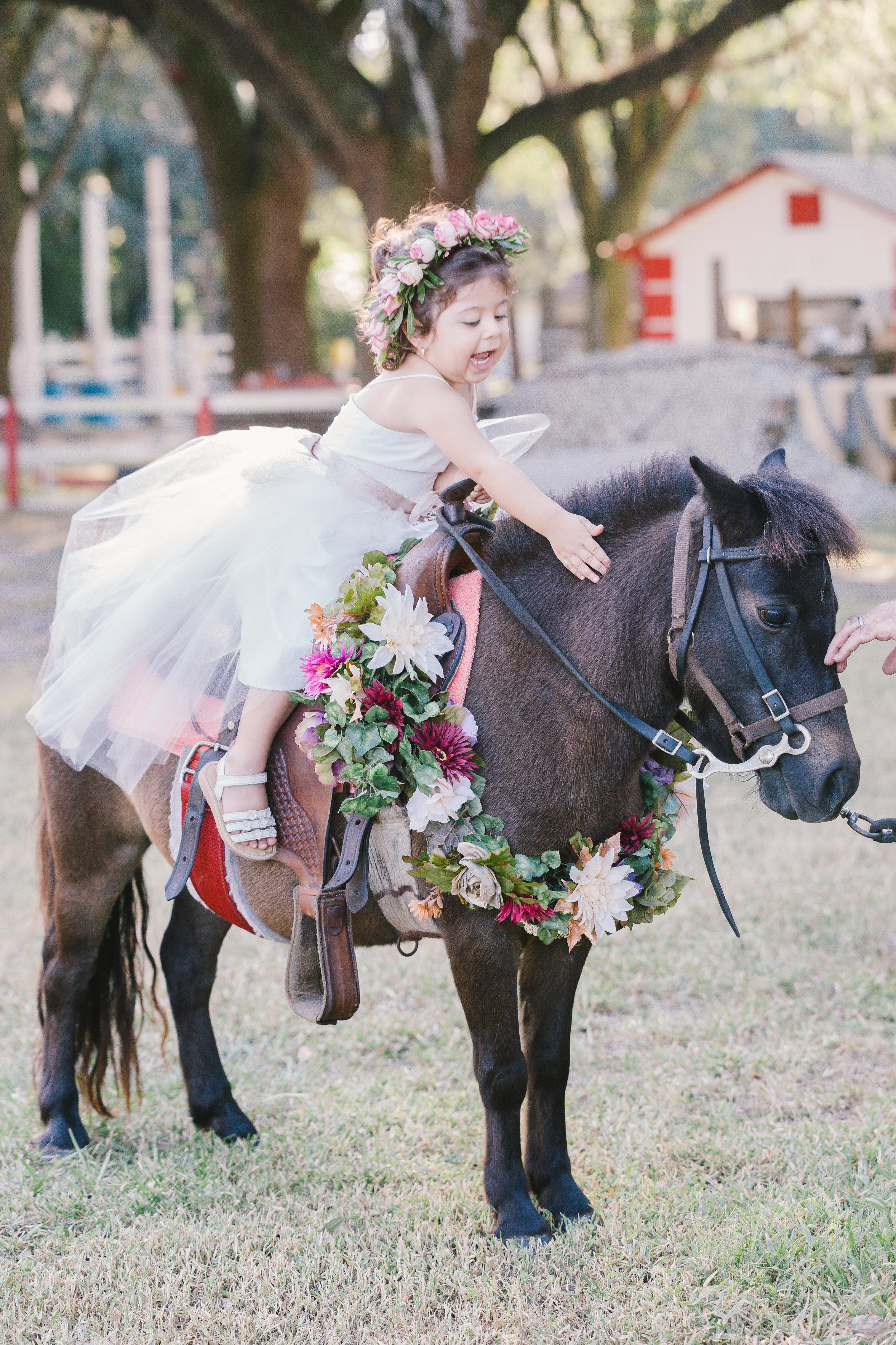 Magical Pony session, Tampa photographer, Tampa kids, Tampa wedding photographer