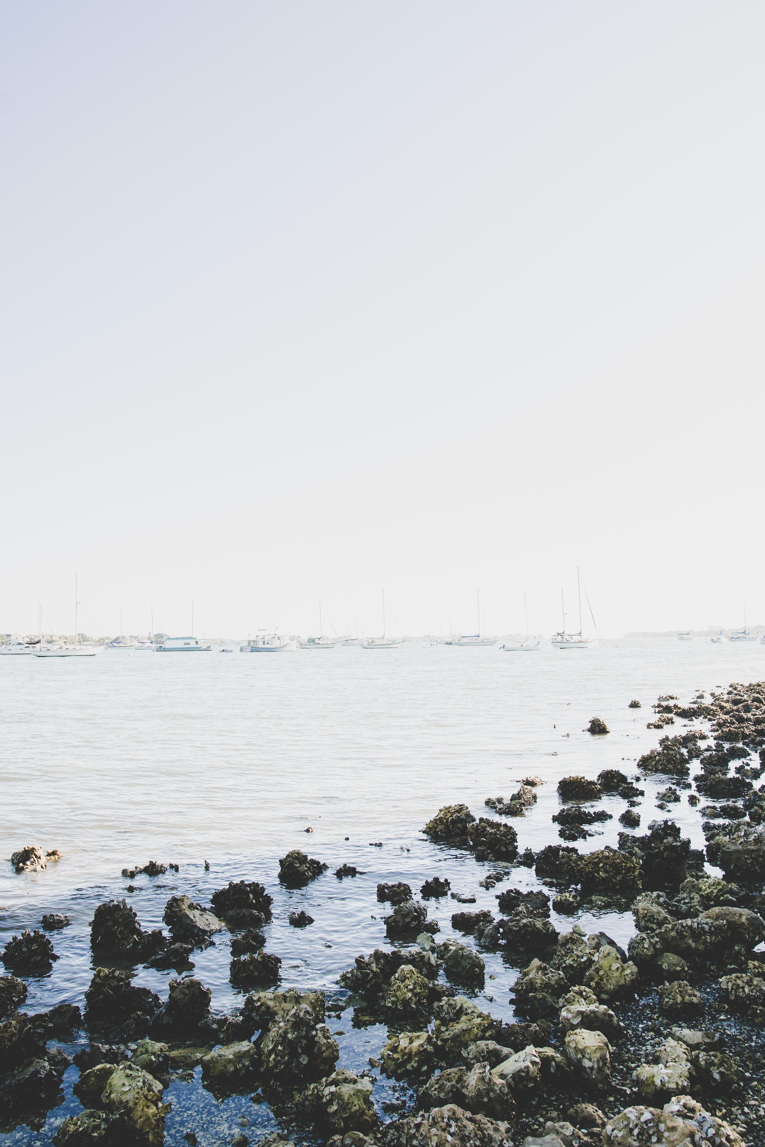 Sarasota-photographer
