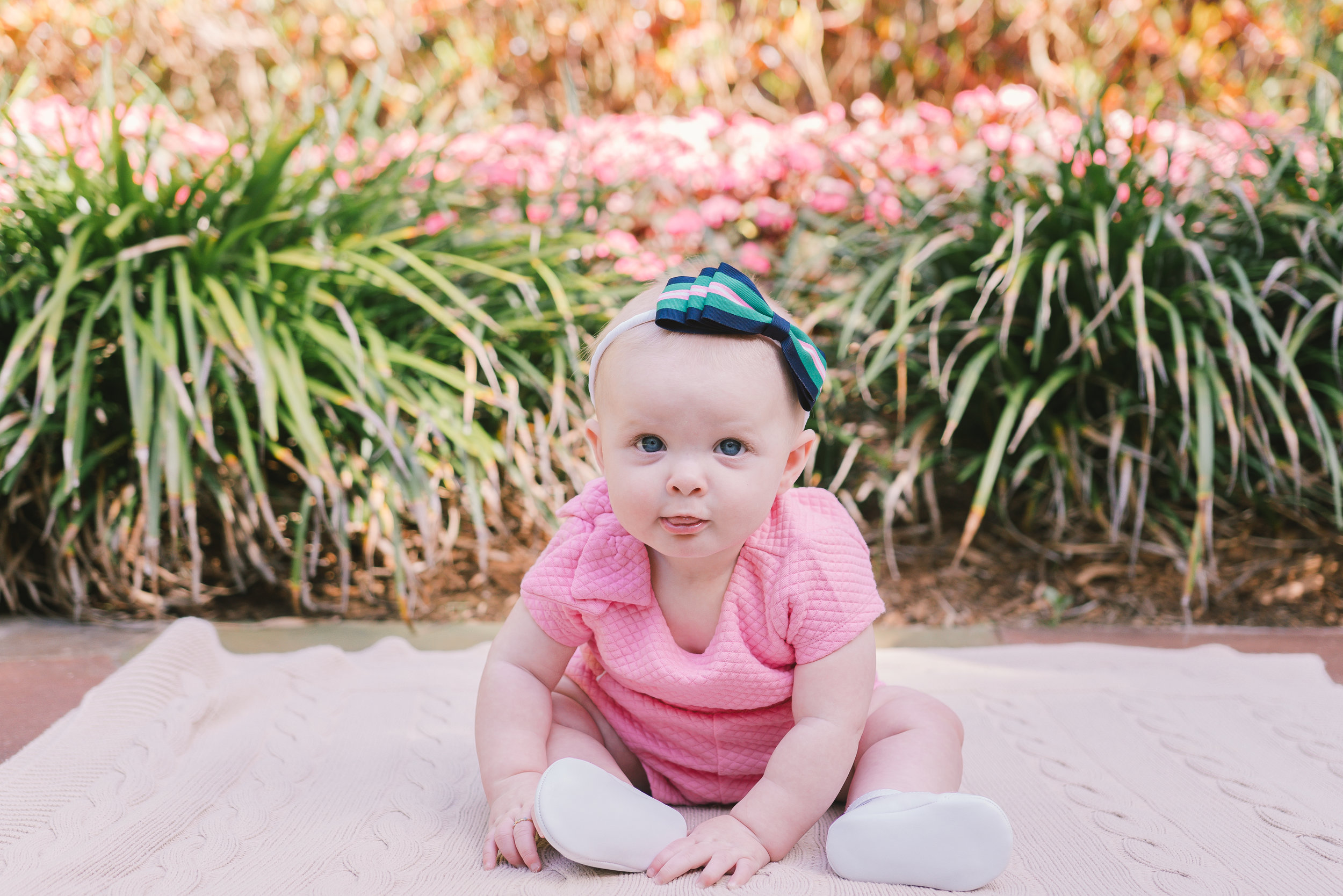 baby-photo, Sunken-gardens-baby-photo, St.Pete-baby-session