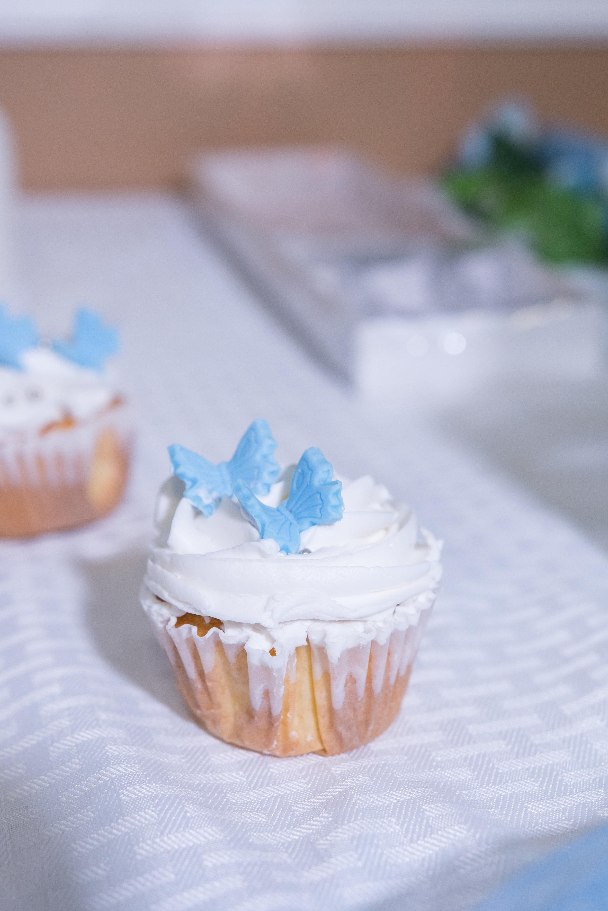 Wesley-Chapel-bakery-cakes, Cupcake-birthday-party