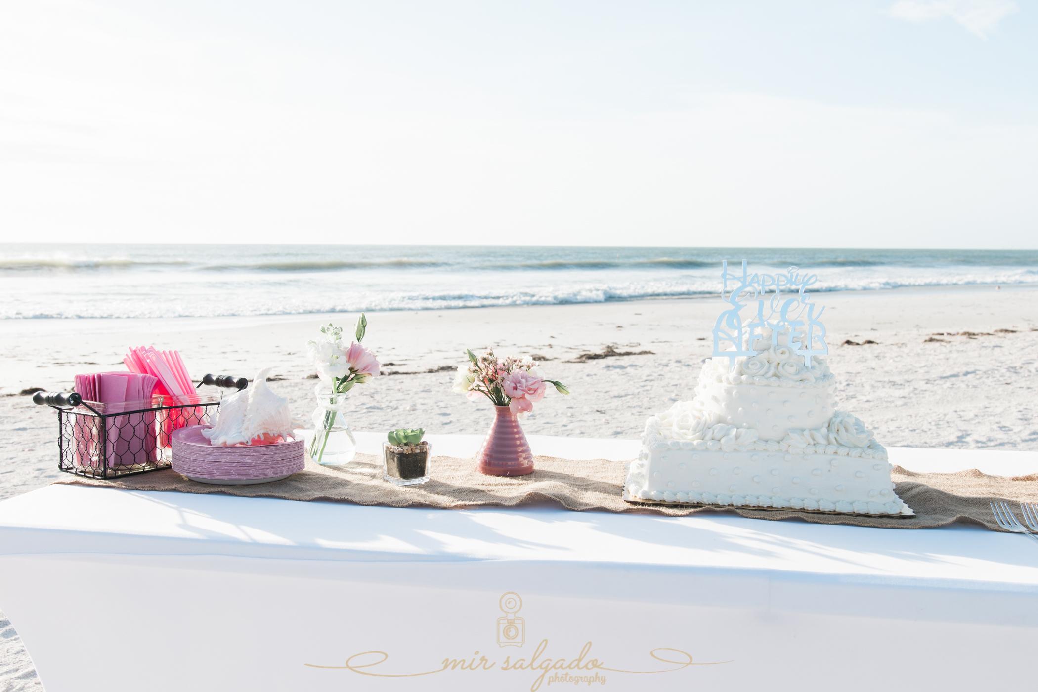 St.Pete-beach-wedding-cake-cutting, St.Pete-wedding-photo, wedding-cake