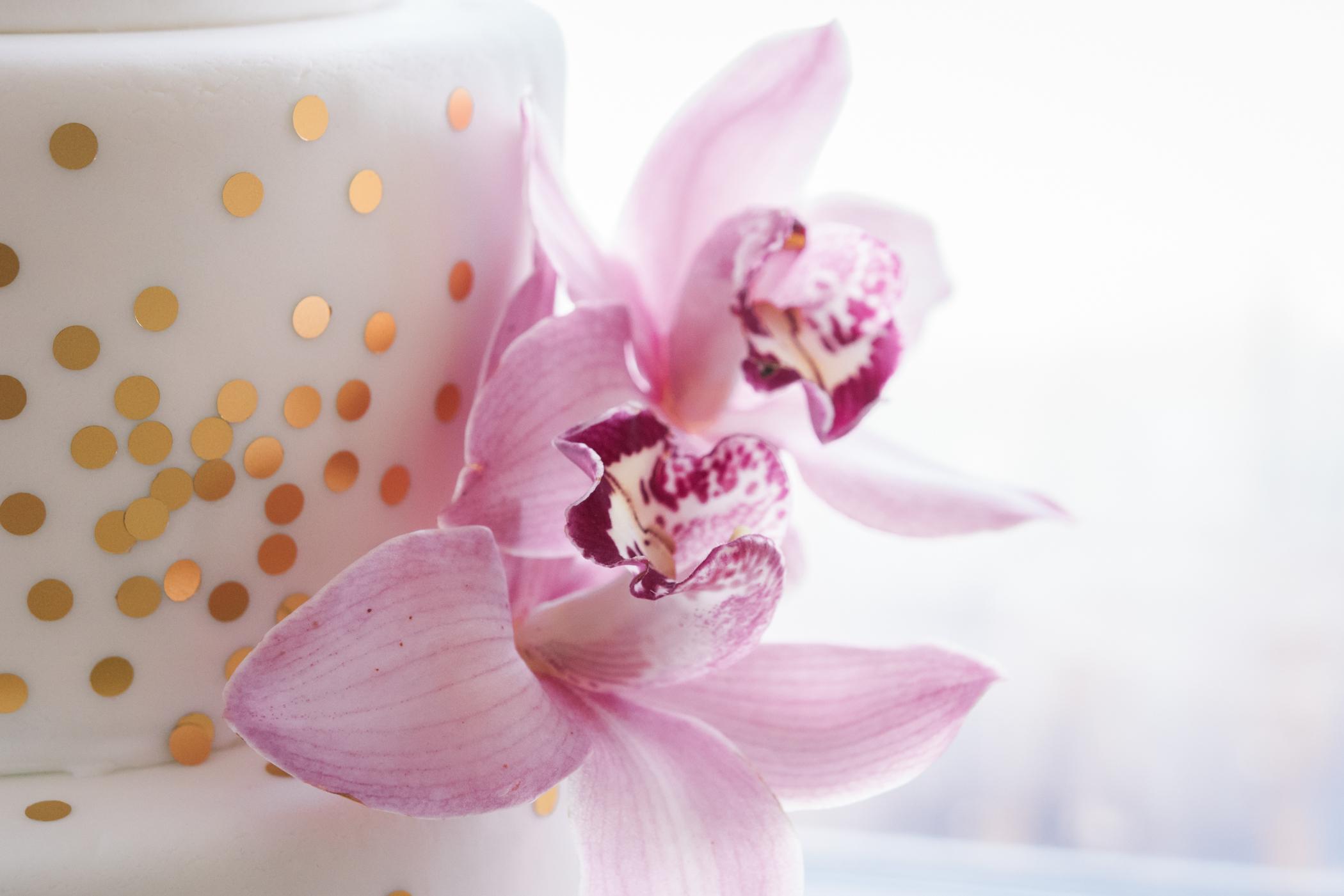 Bok-tower-gardens-wedding-day, Tampa-wedding-photographer, wedding-cake