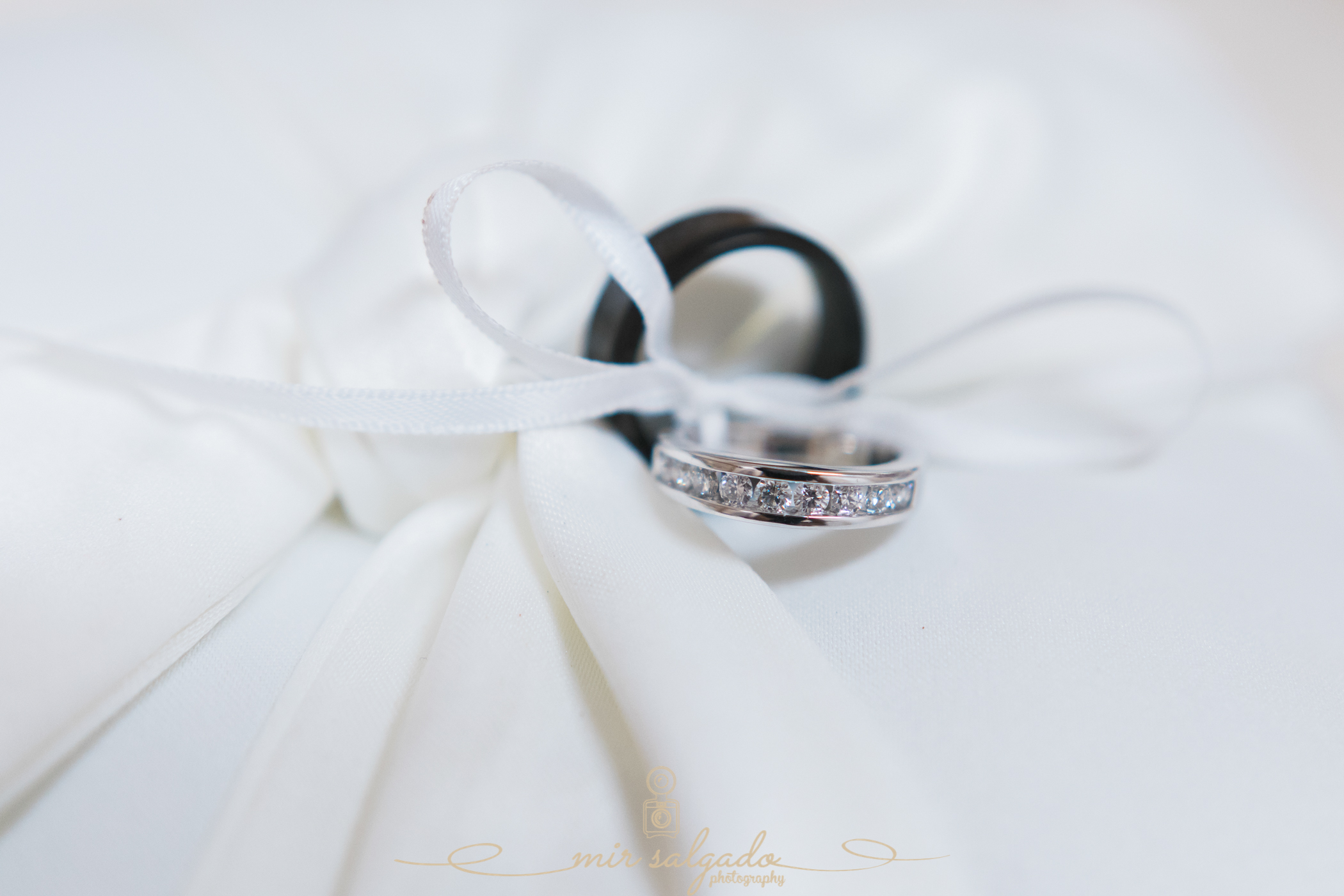 wedding-rings-photo, Bok-tower-gardens-weddingceremony