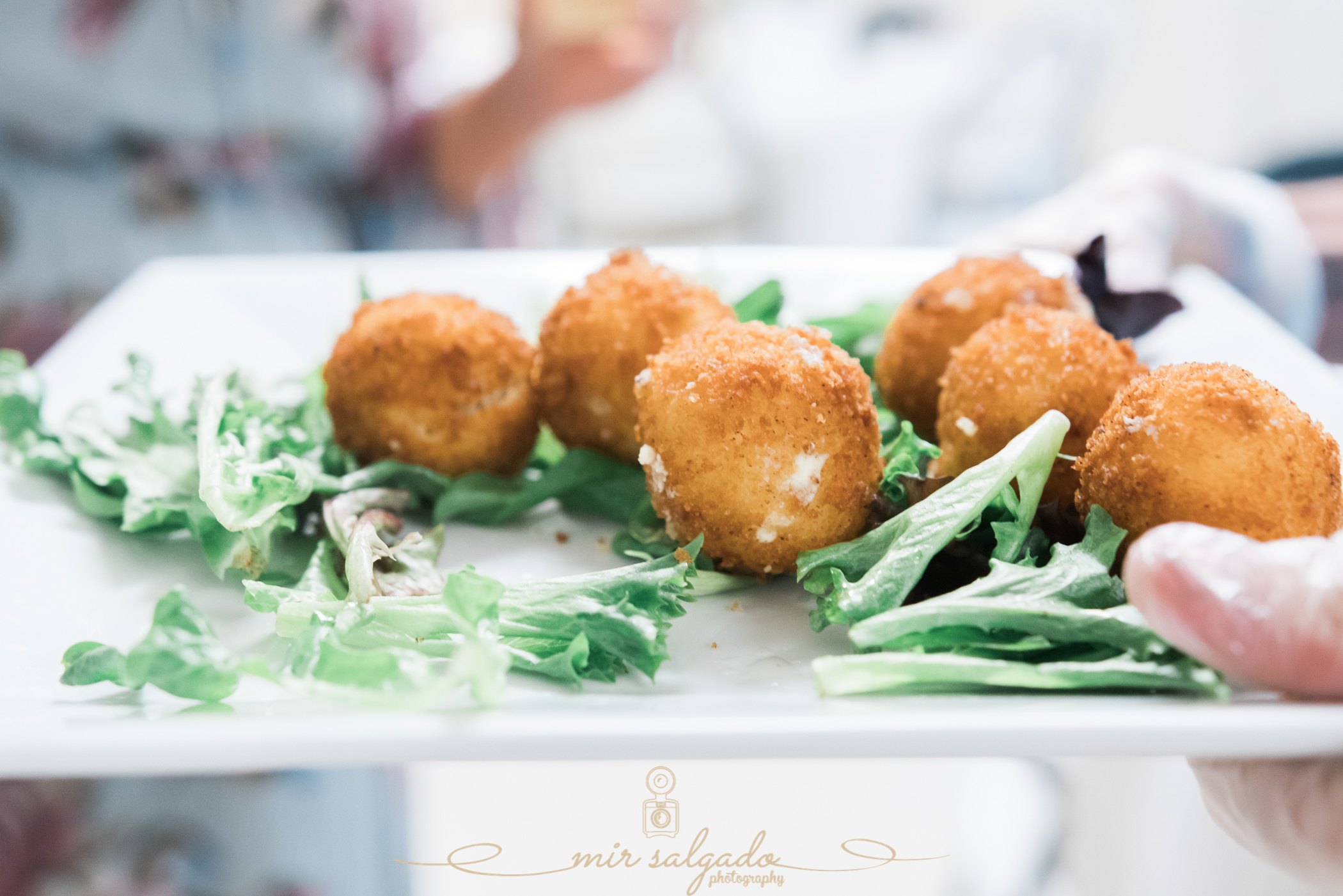 Tampa-photographer, Tampa-catering