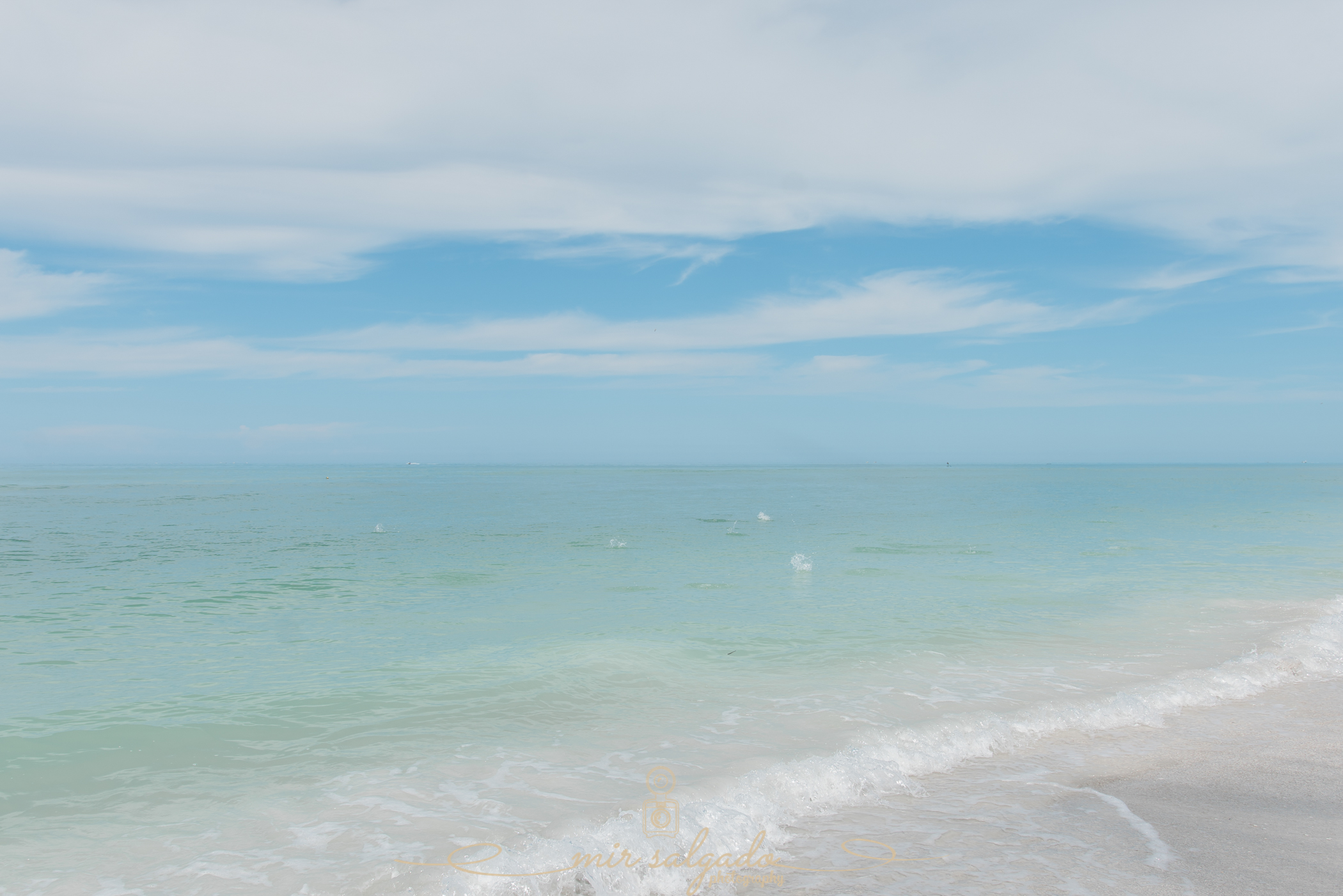 Visit-Florida, Sarasota-beach-wedding, best-location-to-celebrate-a-beach-wedding