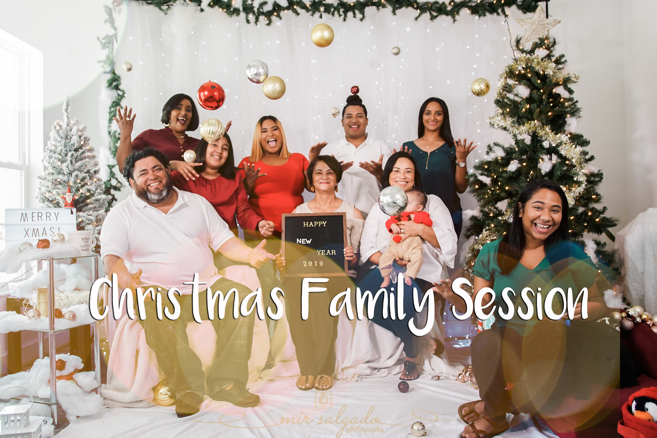 tampa-christmas-family-session, tampa-family-photographer, tampa-photographer, animal-friendly-tampa-photographer