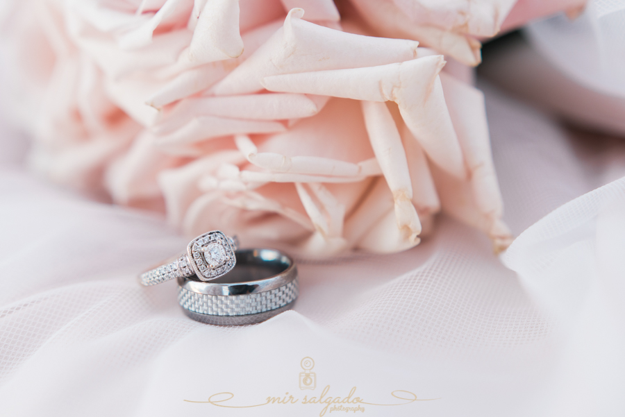 Ring-photo, wedding-photographer, Tampa-wedding, Florida-wedding-photographer