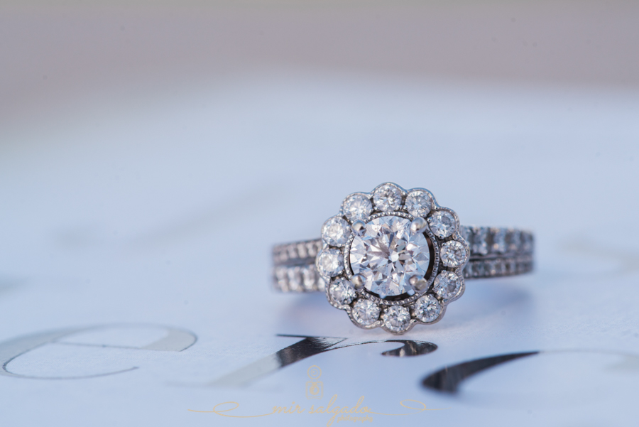 Tampa-engagement-ring, Tampa-engagement-session