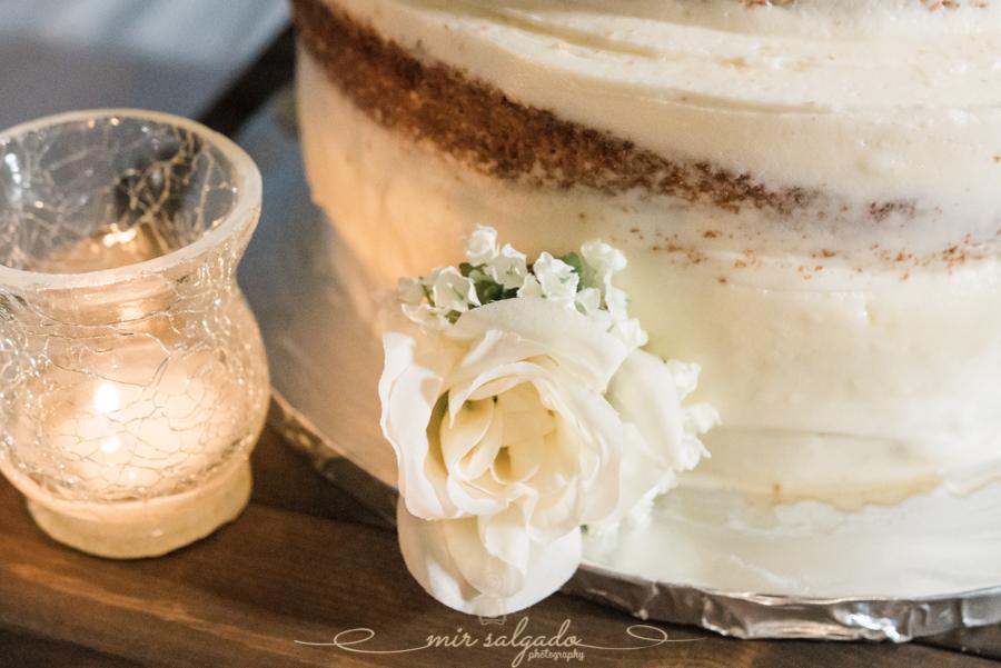 Bradenton-wedding, Tampa-wedding