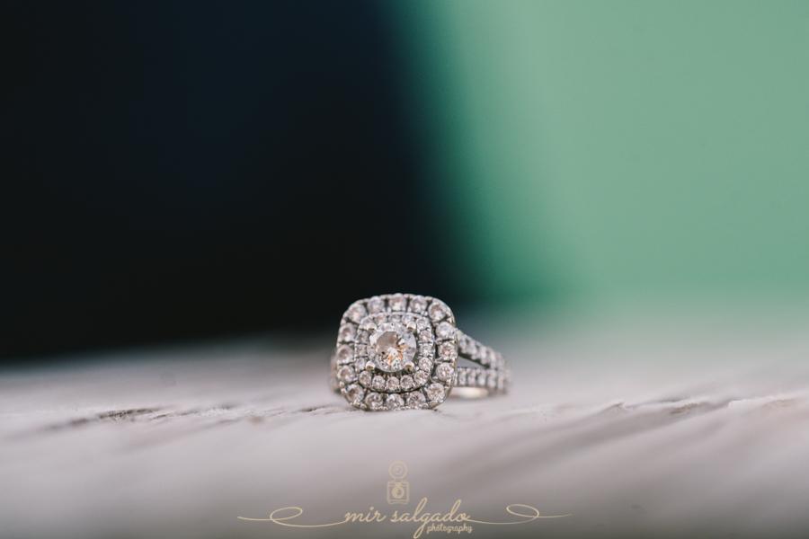 Nalenie & Amit Engagement-101.jpg