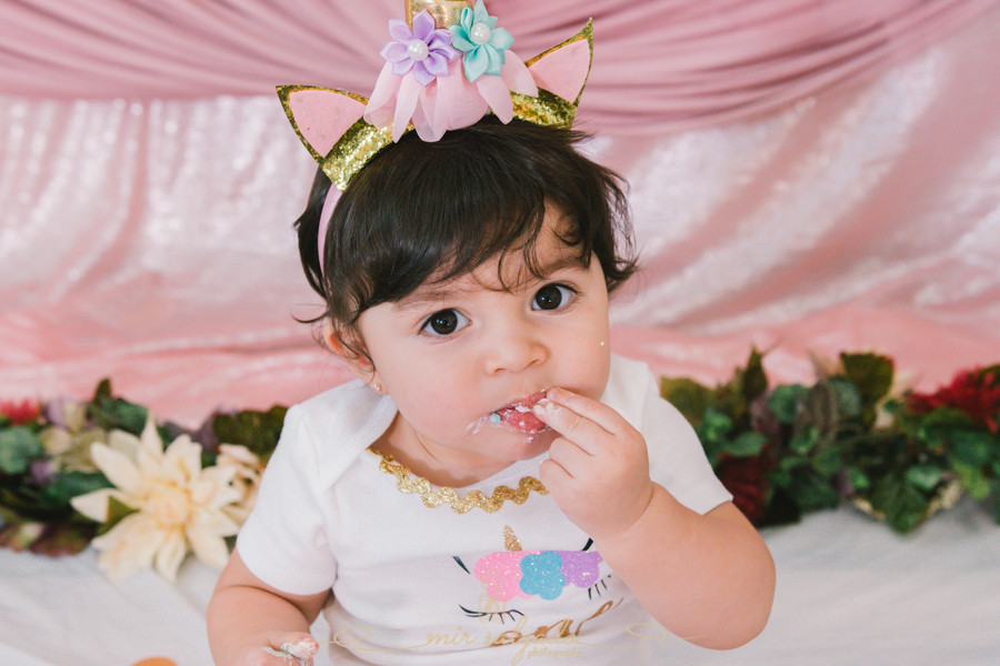 Child's First Birthday | Sofia Smash Cake Family Session