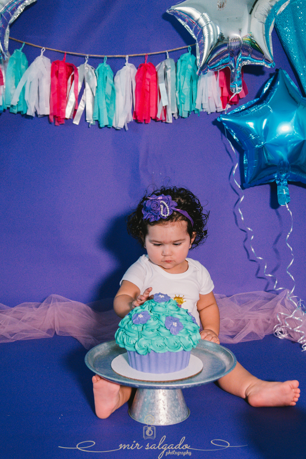 Purple and Blue Themed First Birthday   Sofia Cake Smash Session