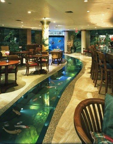 indoor pond.jpg