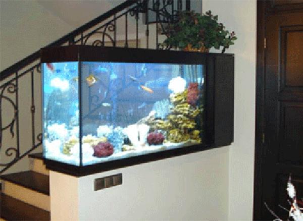 aquarium-interior-design_950_600_438.jpg