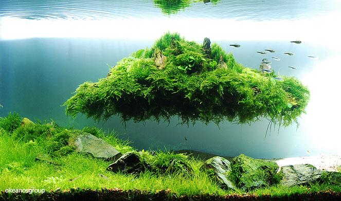 floating hill rock.jpg