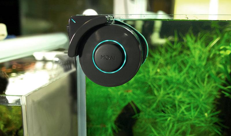 moai-robot-cleaner.jpg