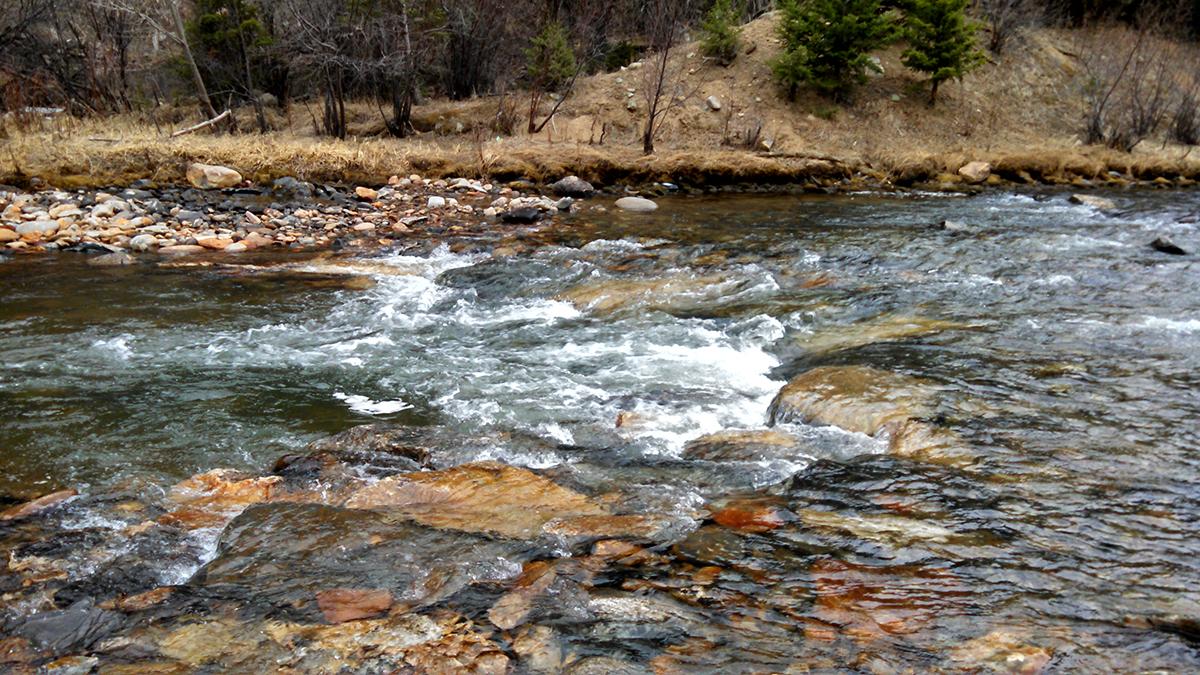River Restoration / Flood Resiliency
