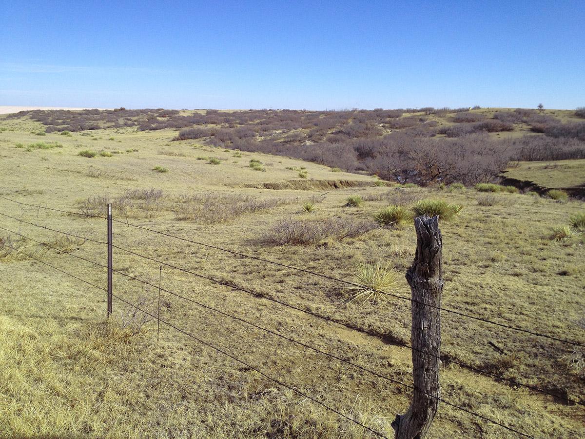 Natrural Landform.jpg