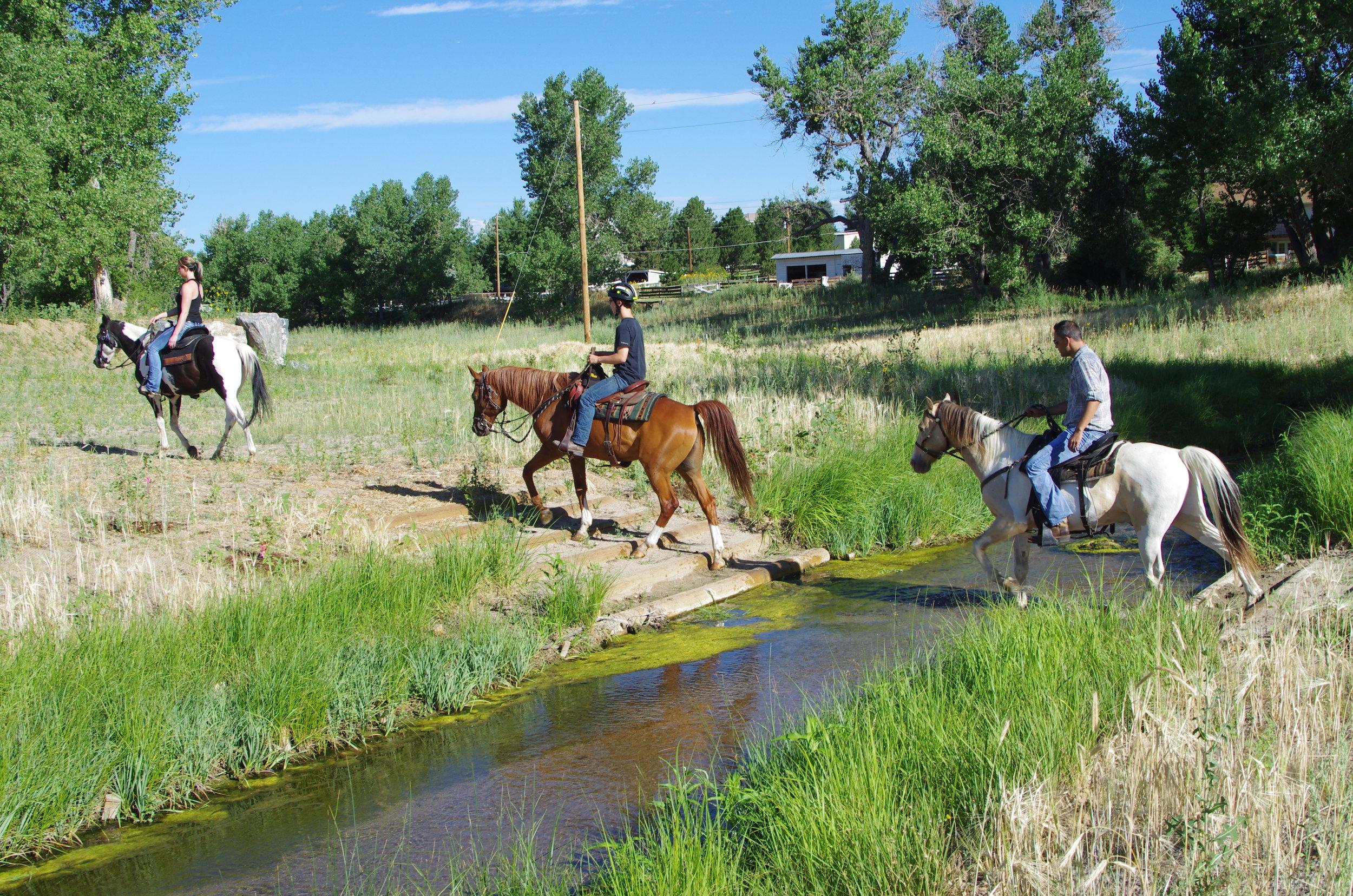 Piney Creek Restoration