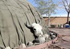 Buffalo skull leaning against VA Center sweat lodge, Photo by Taki Telonidis
