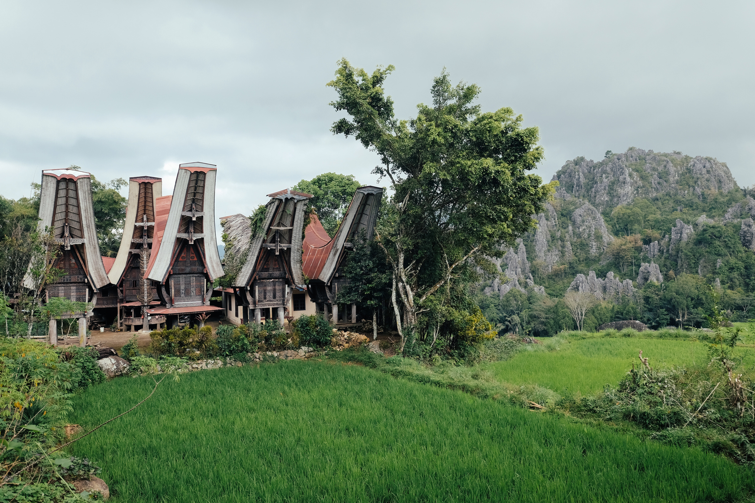 A village by the side of a road in North Toraja. Karst mountains loom up in the near distance.