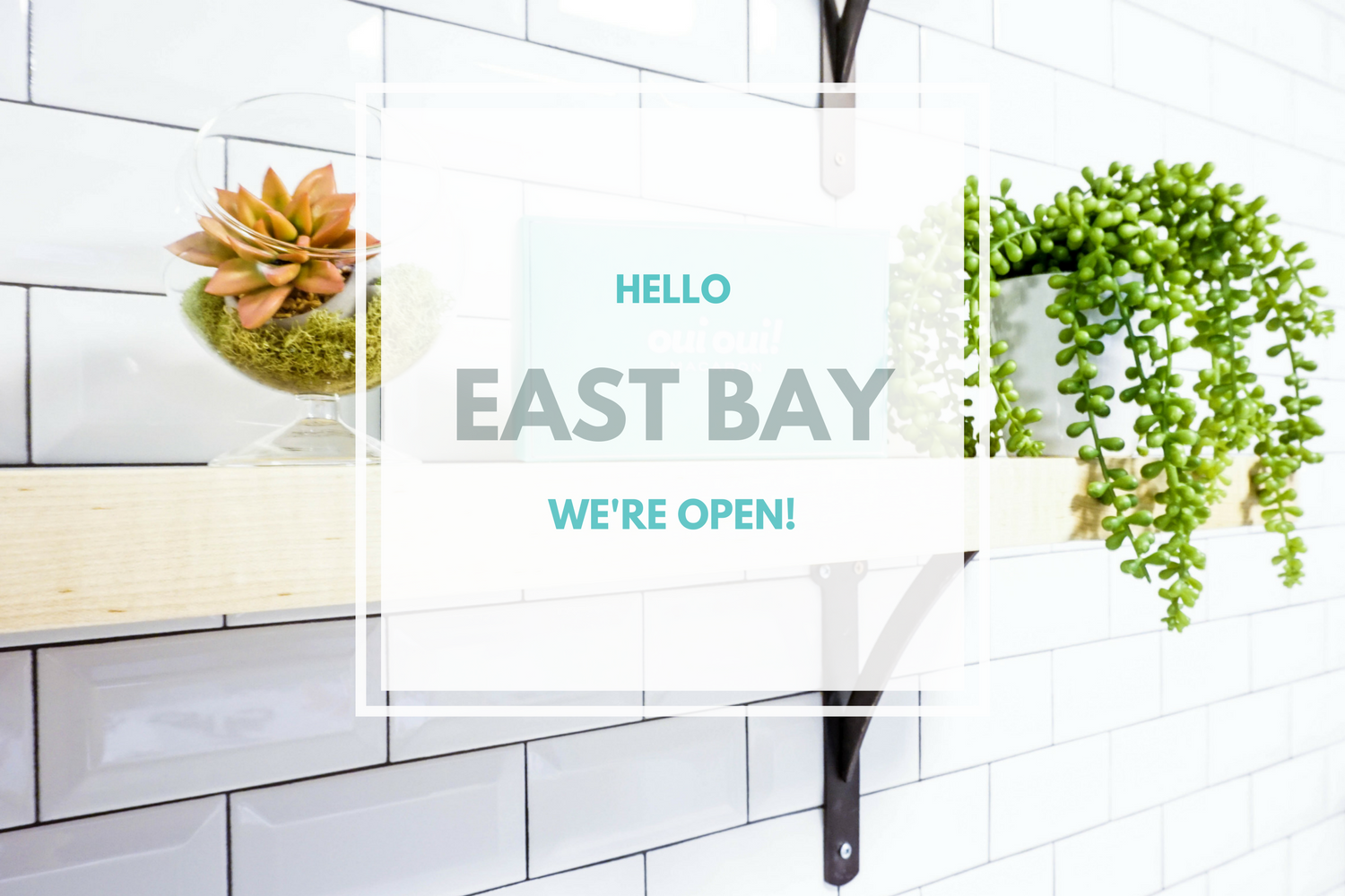 EAST BAYStoreNow Open! (1).png