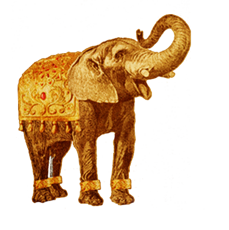 Beauty Salon Bristol Clifton Bonjour Bellebonjour Belle Find & download free graphic resources for elephant. beauty salon bristol clifton bonjour