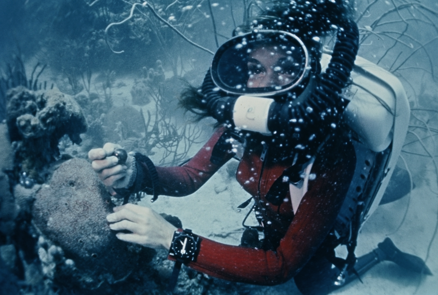"""Conservation 