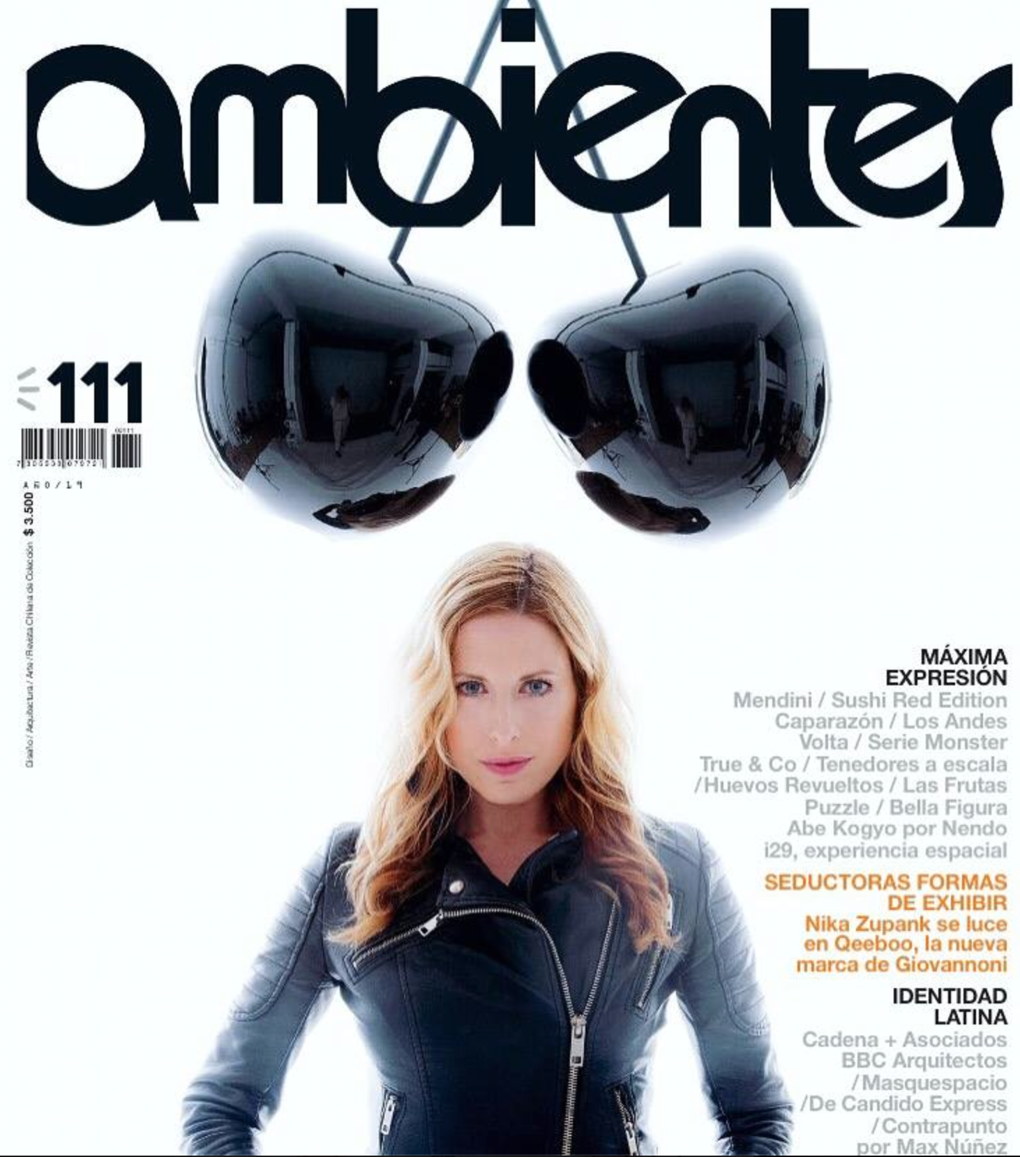 Ambientes magazine 2016
