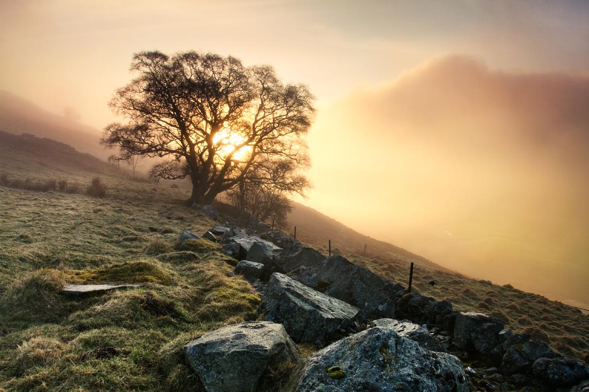 Perthshire_08.jpg